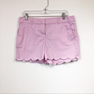 Loft Pink Purple Scalloped Hem Shorts